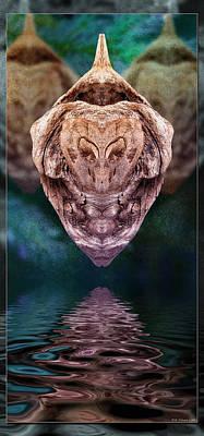 Photograph - Drift-lev 2 by WB Johnston