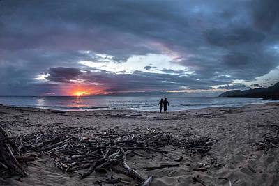 Ashore Photograph - Drift Wood by Sean Davey