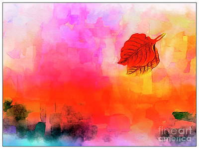 Photograph - Drifting In The Wind by Judi Bagwell