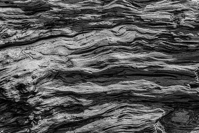 Photograph - Driftwood Abstract by Garry Gay