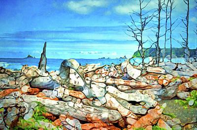 Olympic National Park Digital Art - Driftwood Along The Washington Coast by Tara Turner