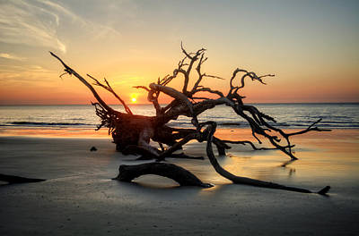 Driftwood Photograph - Driftwood And Sand by Chrystal Mimbs