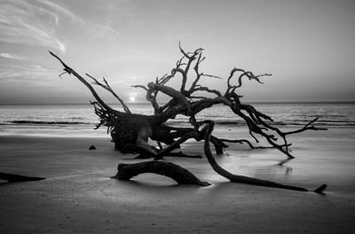 Driftwood Photograph - Driftwood And Sand In Black And White by Chrystal Mimbs