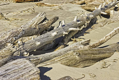 Photograph - Driftwood And Sand On Popham Beach On The Coast Of Maine by Keith Webber Jr