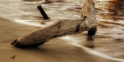 Driftwood Photograph - Driftwood And Tide by Greg Mimbs