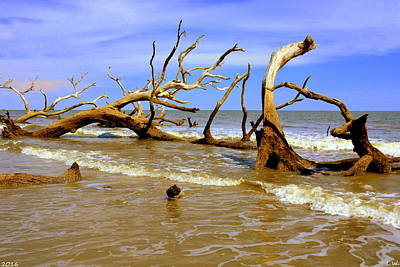 Driftwood And Waves Art Print