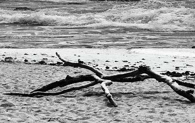 Photograph - Driftwood And Waves by Robert Hebert