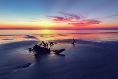 Photograph - Driftwood At Dawn by Debra and Dave Vanderlaan