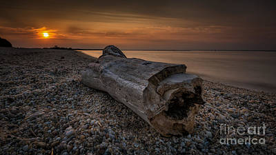 Photograph - Driftwood Beach by Alissa Beth Photography