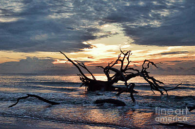 Photograph - Driftwood Beach Sunrise by Kerri Farley