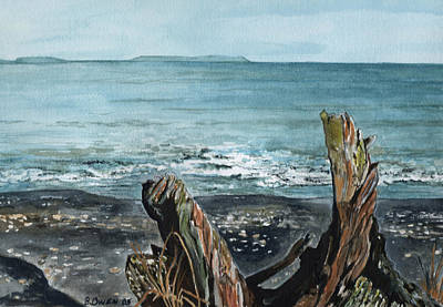 Driftwood Print by Brenda Owen