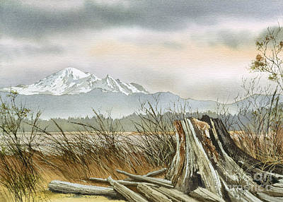 Driftwood Dawn Art Print by James Williamson