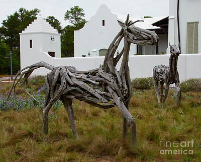 South Walton Photograph - Driftwood Horses by Megan Cohen