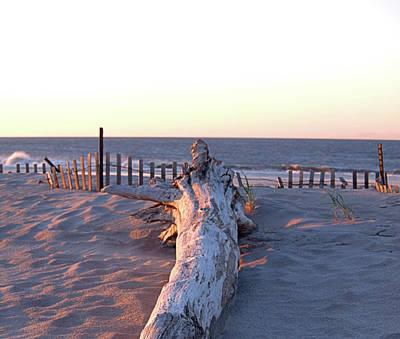 Photograph - Driftwood I I by Newwwman