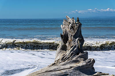 Photograph - Driftwood In The Surf by Dave Matchett