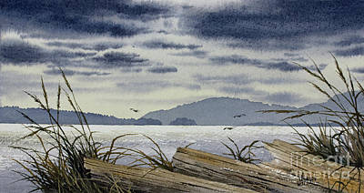 Painting - Driftwood Island Shore by James Williamson