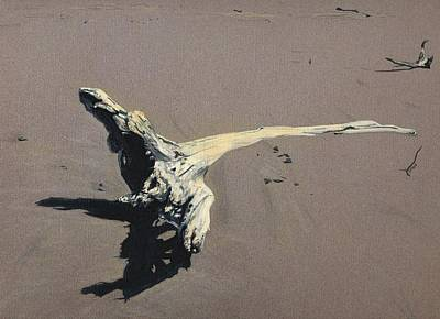 Painting - Coastal Driftwood by Jason Girard