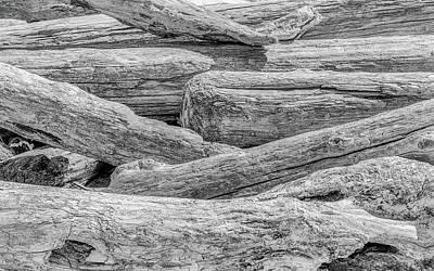 Driftwood Photograph - Driftwood by Joseph Smith