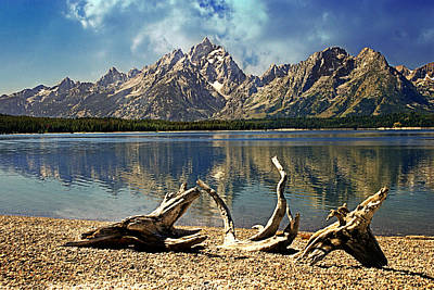 Photograph - Driftwood Mountain by Marty Koch