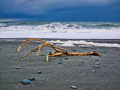 Photograph - Driftwood - Okarita Beach - New Zealand by Steven Ralser