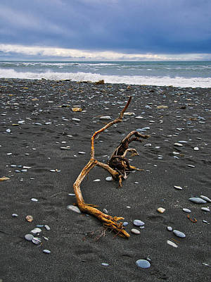 Photograph - Driftwood - Okarito Beach - New Zealand by Steven Ralser