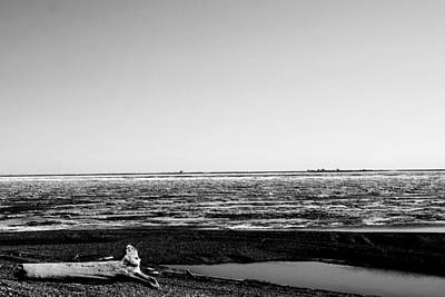 Photograph - Driftwood On Arctic Beach Balck And White by Anthony Jones