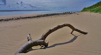 Photograph - Driftwood On Beach by Richard Brookes