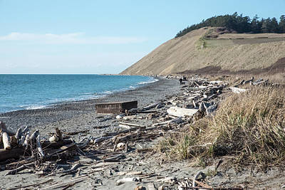 Photograph - Driftwood On Ebey's Landing by Tom Cochran