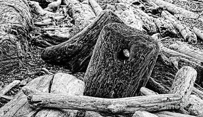 Photograph - Driftwood Piled Up on Beach in Black White by Colin Cuthbert