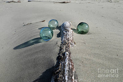 Photograph - Driftwood, Sand, And Glass by Denise Bruchman