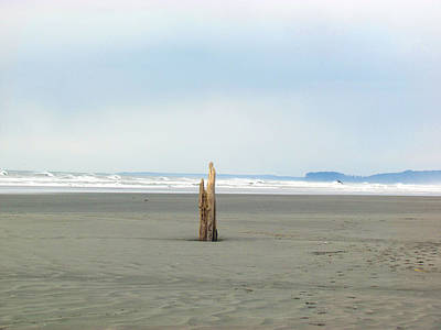 Photograph - Driftwood Sculptures On Ruby Beach - Zen - Peace by Marie Jamieson