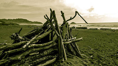 Photograph - Driftwood Shelter by Pacific Northwest Imagery