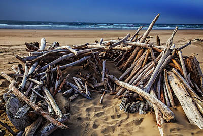 Weatherworn Photograph - Driftwood Shelter Oregon Coast by Garry Gay