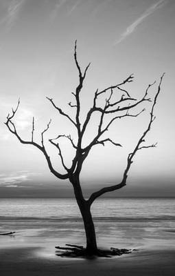 Photograph - Driftwood Silhouette In Black And White by Greg Mimbs