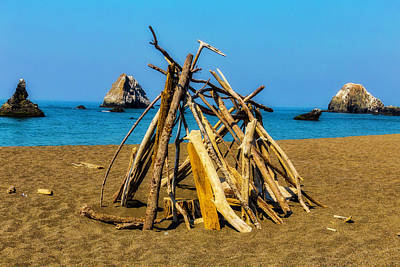 Photograph - Driftwood Structure by Garry Gay