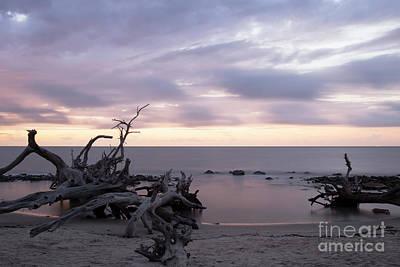 Photograph - Driftwood Sunrise by Ben Sellars