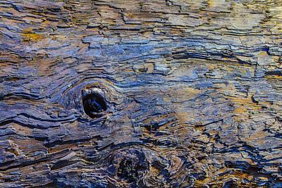 Photograph - Driftwood Texture 2 by Garry Gay