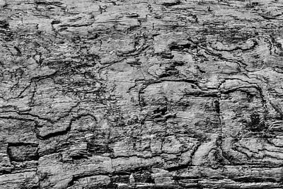 Photograph - Driftwood Texture by Garry Gay