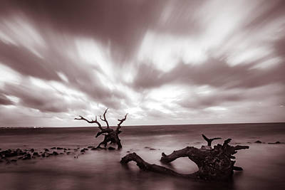 Photograph - Driftwood Velvet Dawn by Chris Bordeleau