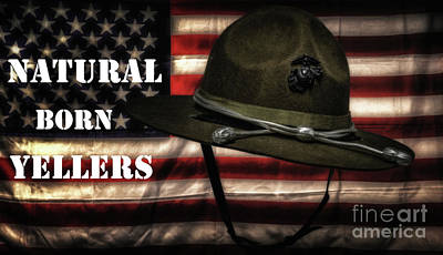 Stars And Stripes Mixed Media - Drill Instructors by Hans Zimmer