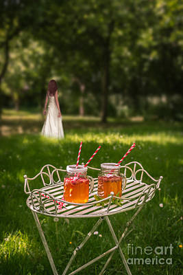 Drinks In The Park Print by Amanda Elwell