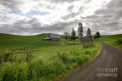 Photograph - Drive Through The Country by Idaho Scenic Images Linda Lantzy