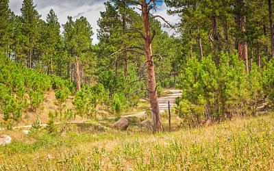 Photograph - Driving Through Custer by John M Bailey