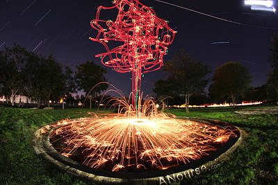 Photograph - Drone Tree 1 by Andrew Nourse