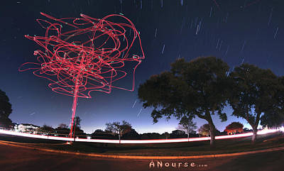 Photograph - Drone Tree by Andrew Nourse