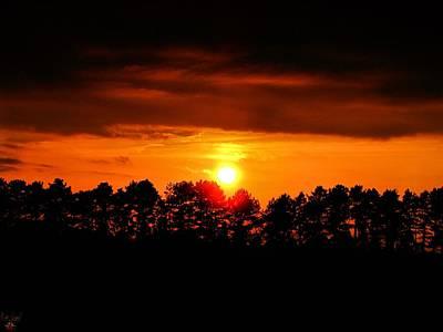 Photograph - Drop Of Golden Sun by Scott Hovind