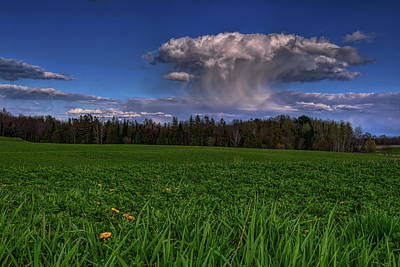 Photograph - Dropping Some Spring Rain by Dale Kauzlaric