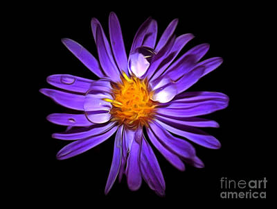 Daisy Photograph - Drops Of Life by Krissy Katsimbras