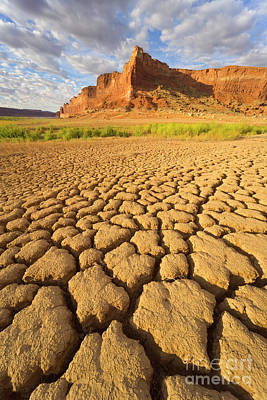 Photograph - Drought Glen Canyon Utah by Yva Momatiuk John Eastcott