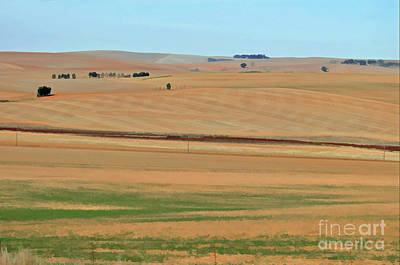 Photograph - Drought-stricken South African Farmlands - 2 Of 3  by Josephine Cohn
